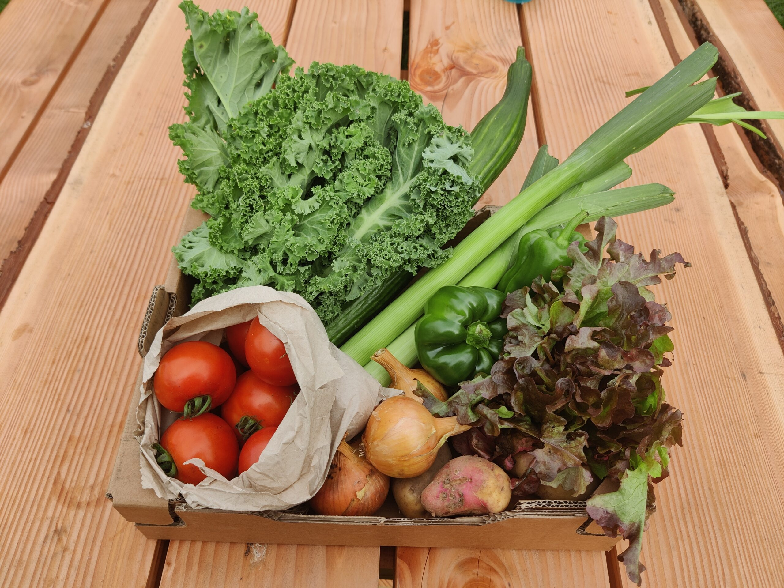 A veg box showing potatoes, onions, green peppers, leeks, cucumber, kale, tomatoes and lettuce